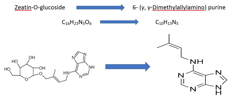 6- (γ γ-DimethylallylAminoPurine-2iP-03