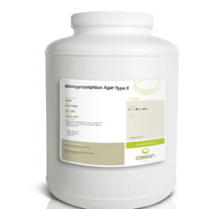 High quality agar for plant tissue culture; Derived from Gelidium; Gel Strength ~750gm/cm2; Ash
